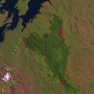 Nyungwe Forest National Park on a satellite image